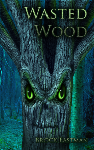 Kindle Cover - Wasted Wood - 7-18-2014